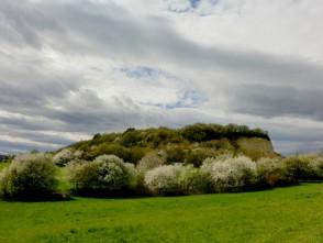 Malý chlum na jaře