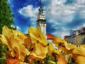 Majové náměstí vBoskovicích