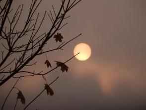 22.9.začal astronomický podzim. Tahle to vloni vypadalo vBlansku