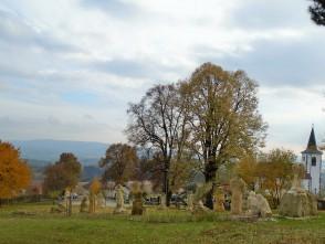 Vísky u Letovic – sochy a padající listí